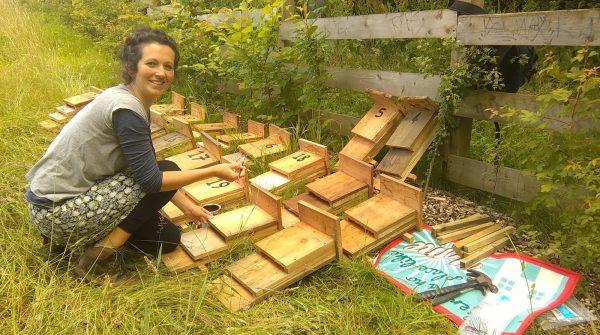 Unicorn Grocery's Debbie Clarke painting bat boxes in Fallowfield.