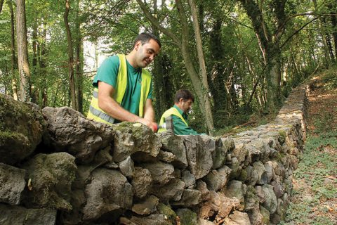 Andalusian worker co-ops are creating new eco-jobs