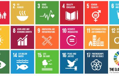 5 SDGs