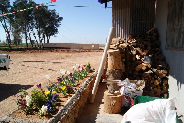 Bistanen Rojava, or 'The Greenhouse Project', where women from 18 communes are to form a co-operative [photo: Jo Magpie]