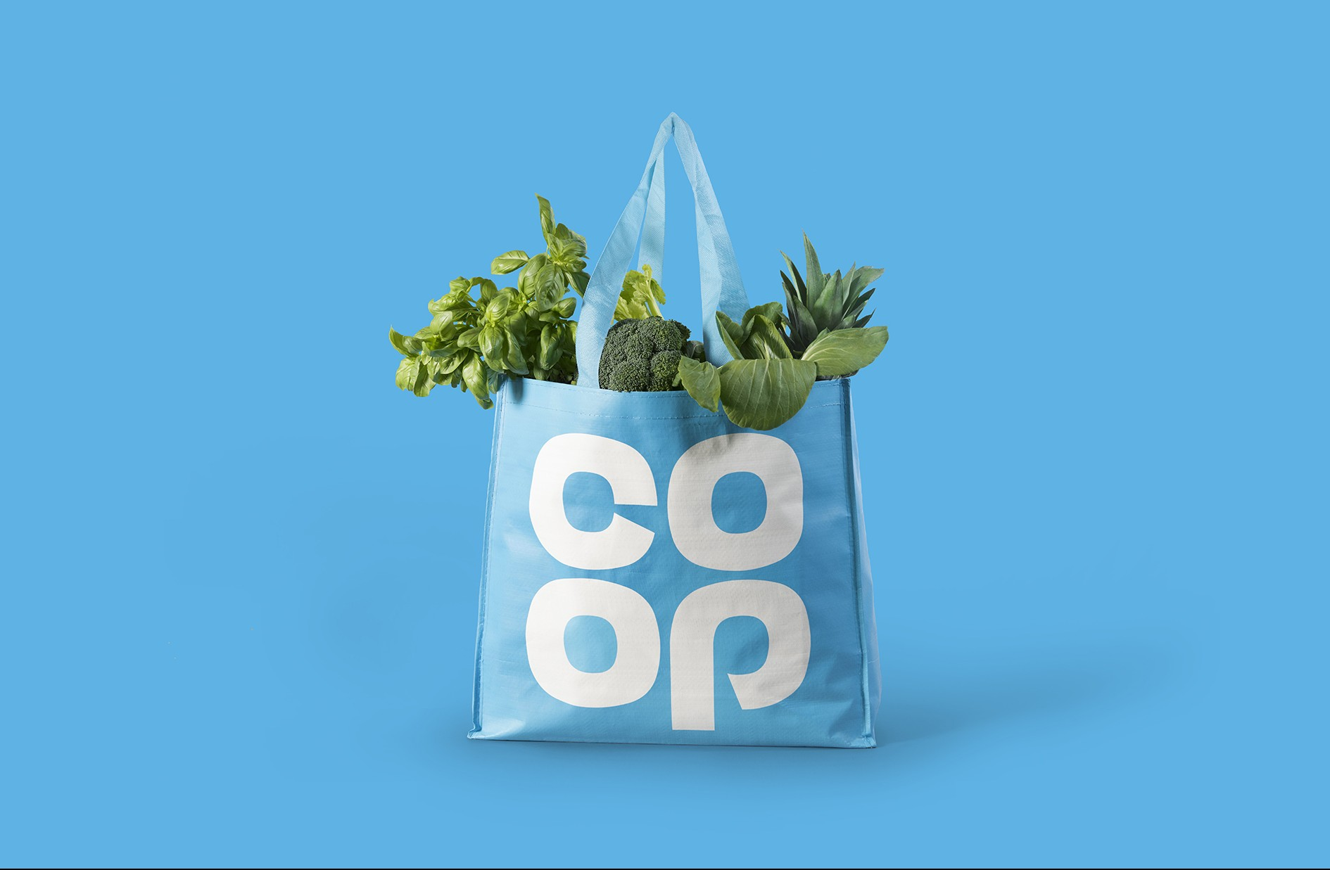 Image result for coop bags