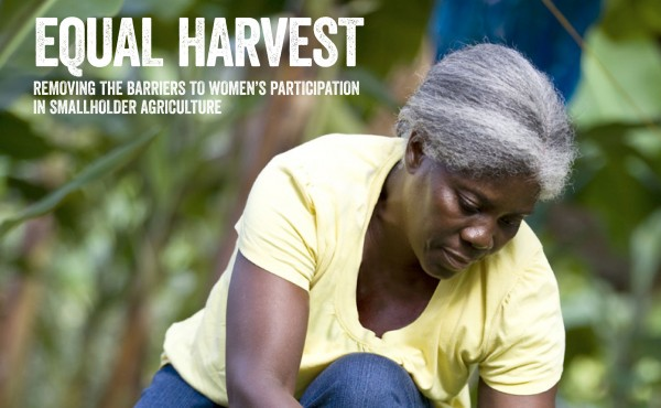 Equal-harvest_Full-report-1