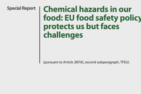 Screenshot of the report