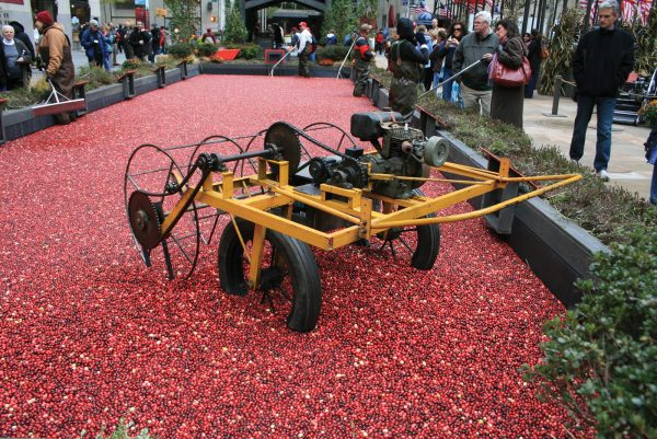 World-renowned cranberry brand Ocean Spray is a US co-operative