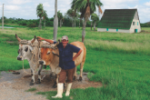 The plan to give access to staple products at lower prices is a boost for Cuban farmers