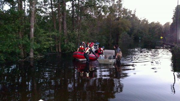 Humane Society International rescuing animals from the post-hurricane flood (Image: HSI on Twitter)