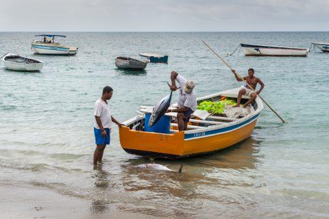 Mauritius fisherment