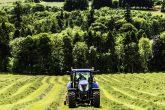 Farmer cuts silage