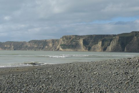 Cape Kidnappers, near Hawkes Bay