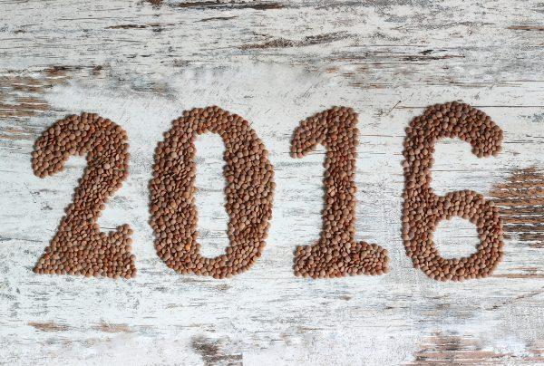 lentils 2016 for web