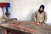 Women take carpentry lessons at Sekem