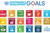 The UN's Sustainable Development Goals